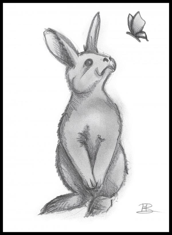 kaartje konijn van popp3kaartjes