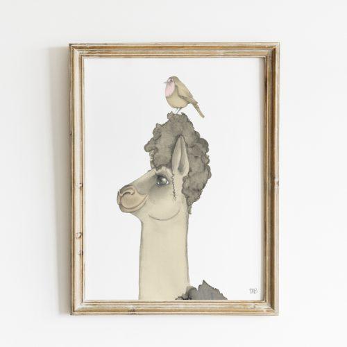 poster met alpaca
